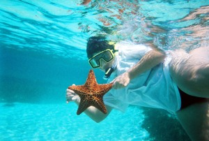 nancystarfish