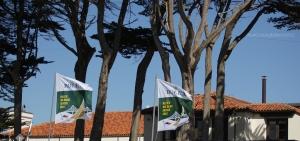 rolex-banners-st-francis-yc-nbirnbaum2012